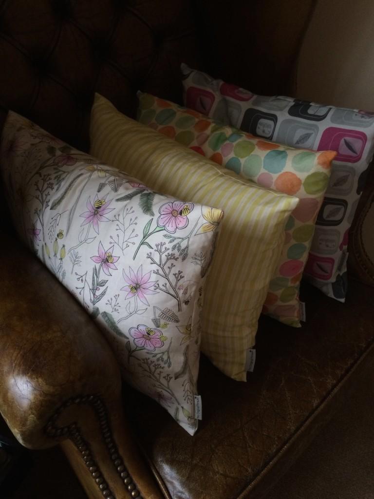 Cushions Oct 2015